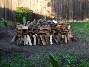 Wood ready to lite. Ti Leaves of protection are spread around